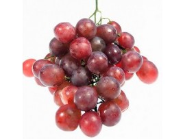 GRAPES FLAME SEEDLESS