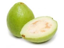 GUAVA WHITE