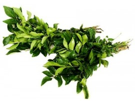 CURRY LEAVES BUNCH (KARIVEPPILA)