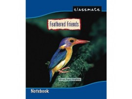 ITC CLASSMATE FOUR LINE WITH GAP NOTE BOOK SOFT BIND SCHOOL SIZE 92 PAGES
