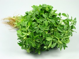 METHI BUNCH