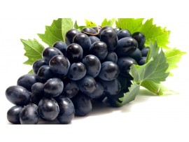 GRAPES BLACK SEEDLES