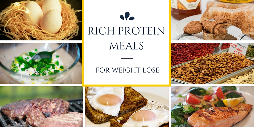 Rich protein foods for lose weight